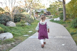 Exploring the Japanese Friendship Garden